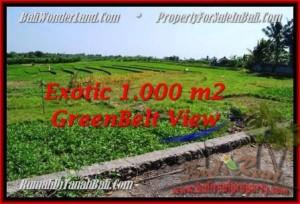 Exotic 1,000 m2 LAND SALE IN Canggu Pererenan BALI TJCG184