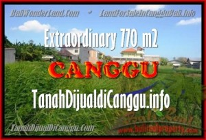 Exotic PROPERTY 770 m2 LAND IN CANGGU BALI FOR SALE TJCG148