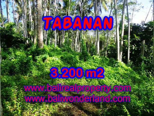 Land for sale in Tabanan Bali, Astounding view in Tabanan Penebel – TJTB120