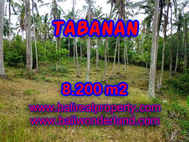 Land in Bali for sale, attractive view in Tabanan selemadeg Bali – TJTB142