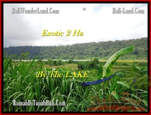 Affordable 20,000 m2 LAND FOR SALE IN TABANAN BALI TJTB195