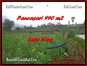 Affordable Tabanan Bedugul BALI LAND FOR SALE TJTB174
