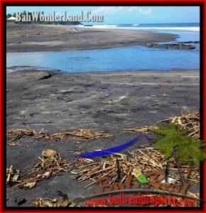Beautiful LAND IN TABANAN BALI FOR SALE TJTB199