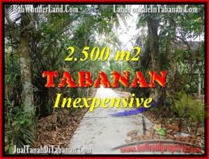 TABANAN 2,500 m2 LAND FOR SALE TJTB160
