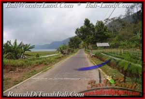 Beautiful PROPERTY LAND IN TABANAN FOR SALE TJTB164