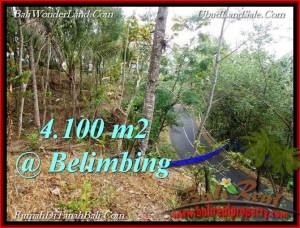 FOR SALE Magnificent PROPERTY 4,100 m2 LAND IN TABANAN BALI TJTB218