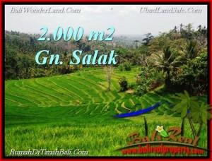 Affordable LAND IN Tabanan Selemadeg BALI FOR SALE TJTB220