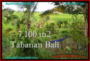 Beautiful PROPERTY 7,100 m2 LAND FOR SALE IN Tabanan Selemadeg TJTB240