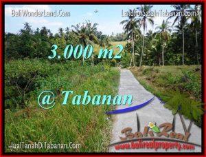 Exotic TABANAN BALI 3,000 m2 LAND FOR SALE TJTB205