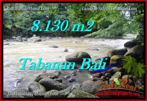 Magnificent 8,130 m2 LAND IN TABANAN BALI FOR SALE TJTB285