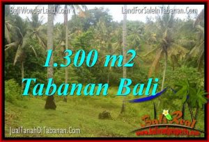 LAND IN Tabanan Selemadeg FOR SALE TJTB314