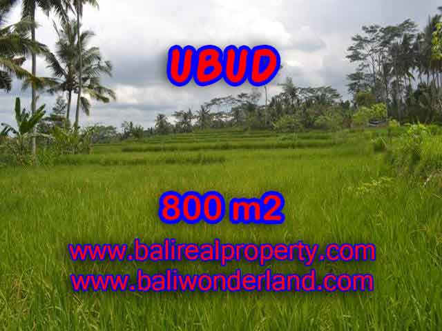 Land for sale in Ubud Bali, Unbelievable view in Ubud Pejeng – TJUB393