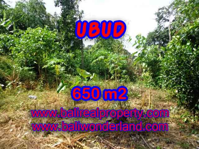Magnificent Land for sale in Bali, Rice fields view by the small river in Ubud Center Bali – TJUB417