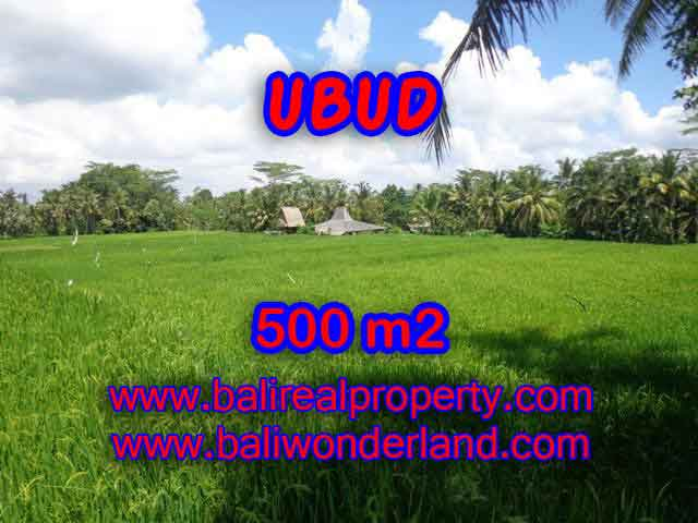 Exotic LAND FOR SALE IN UBUD Bali, Ricefields view in Ubud Payangan– TJUB402