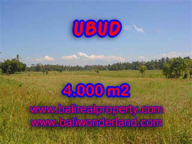 Exotic Property for sale in Bali, LAND FOR SALE IN UBUD Bali – TJUB387