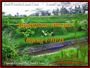 Affordable 400 m2 LAND IN UBUD FOR SALE TJUB483