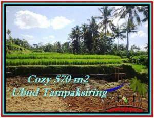 FOR SALE Affordable PROPERTY LAND IN Ubud Tampak Siring BALI TJUB511