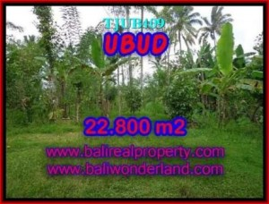 FOR SALE Beautiful PROPERTY 22,800 m2 LAND IN UBUD BALI TJUB409