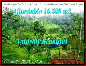 Magnificent LAND FOR SALE IN UBUD TJUB494