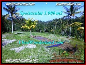 Exotic 1,900 m2 LAND SALE IN UBUD BALI TJUB505