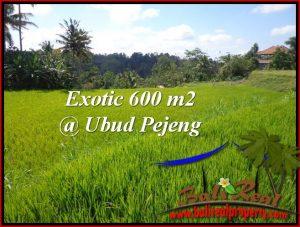 Exotic PROPERTY Ubud Tampak Siring 600 m2 LAND FOR SALE TJUB513