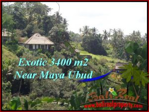 Exotic PROPERTY Ubud Tengkulak 3,400 m2 LAND FOR SALE TJUB514