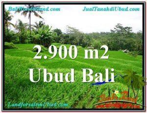 Beautiful LAND SALE IN Ubud Tampak Siring BALI TJUB564
