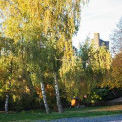 Burg Beilstein Historische Burg Übernachten Unterkunft Westerwald Mittelhessen
