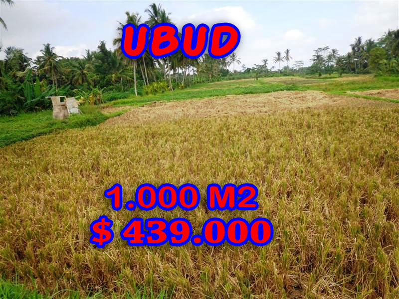 Land in Bali for Sale