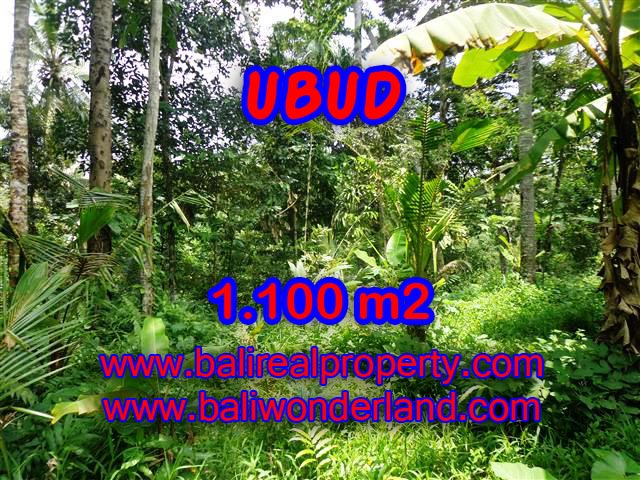Land for sale in Ubud Bali, Great view in Ubud Tampak siring – TJUB378