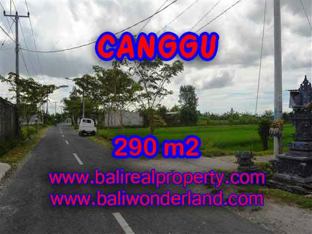 Land for sale in Bali, magnificent view Canggu Bali – TJCG141