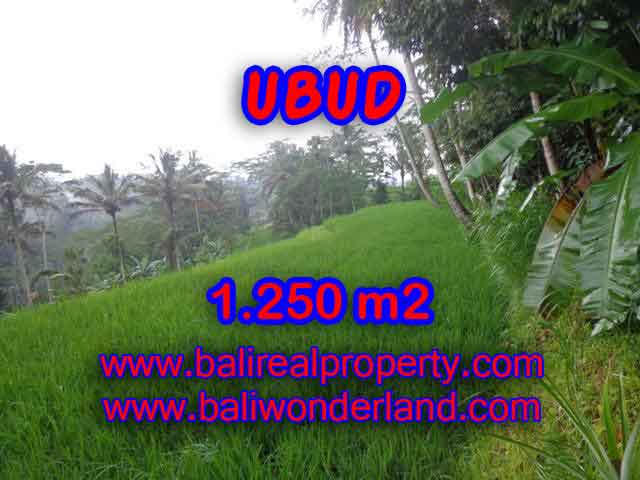 Land in Bali for sale, great view in Ubud Bali – TJUB405