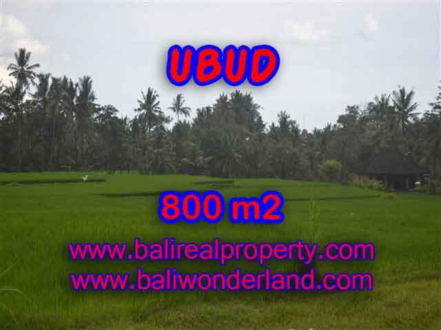 Land in Bali for sale, fantastic view in Ubud Bali – TJUB396