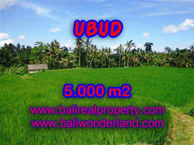 Land for sale in Bali, astonishing view in Ubud Tegalalang Bali – TJUB389