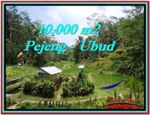 Beautiful LAND FOR SALE IN UBUD TJUB519