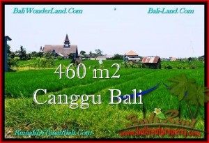 FOR SALE Exotic PROPERTY 460 m2 LAND IN CANGGU TJCG195