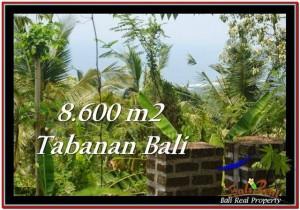 Magnificent TABANAN BALI 8,600 m2 LAND FOR SALE TJTB235