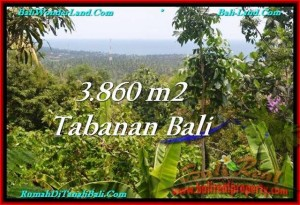 Beautiful 3,860 m2 LAND SALE IN TABANAN BALI TJTB236