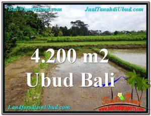 Magnificent 4,200 m2 LAND SALE IN UBUD BALI TJUB561