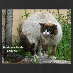 catbusinessmodelcanvas