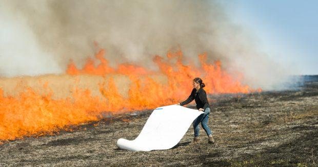Controlled Burn at Konza Prairie Biological