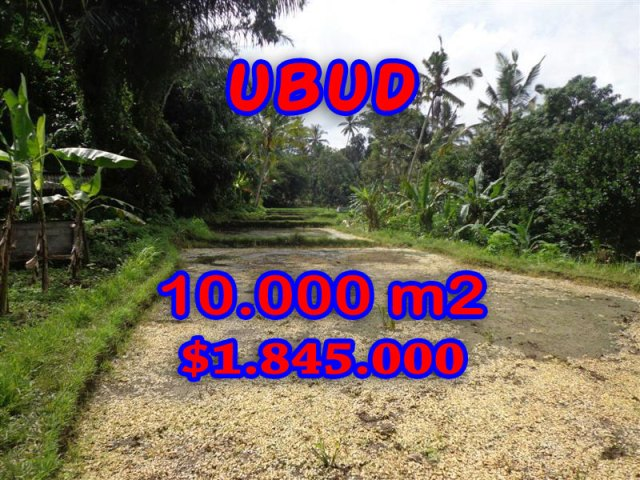 Land-sale-in-Ubud-