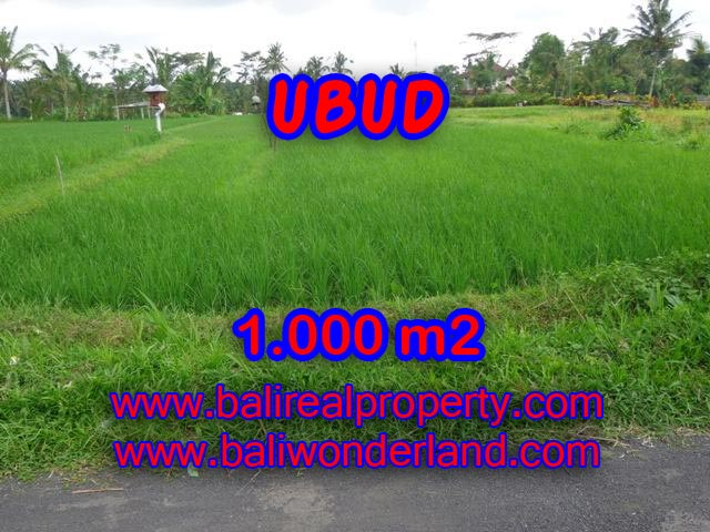 Land for sale in Ubud Bali, Great view in Ubud Tampak siring – TJUB345