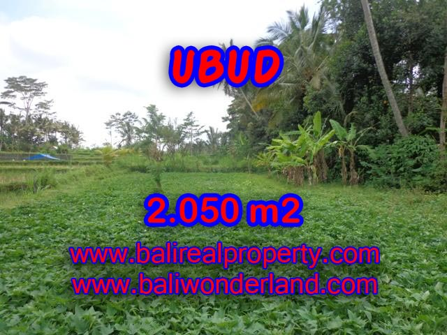Exotic Land for sale in Ubud Bali, rice field view in Ubud Pejeng – TJUB344