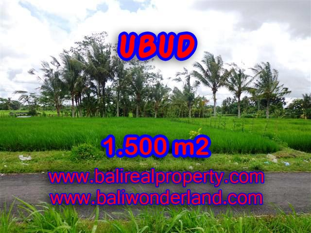 Exotic LAND FOR SALE IN UBUD Bali, Beautiful Mountain and Paddy view in Ubud Tampak siring– TJUB369