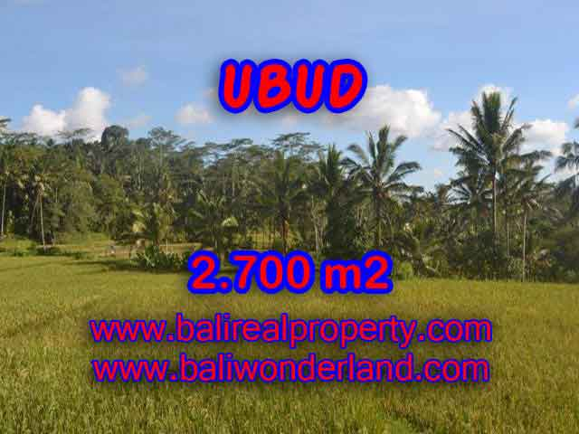 Exotic Property for sale in Bali, LAND FOR SALE IN UBUD Bali – TJUB414
