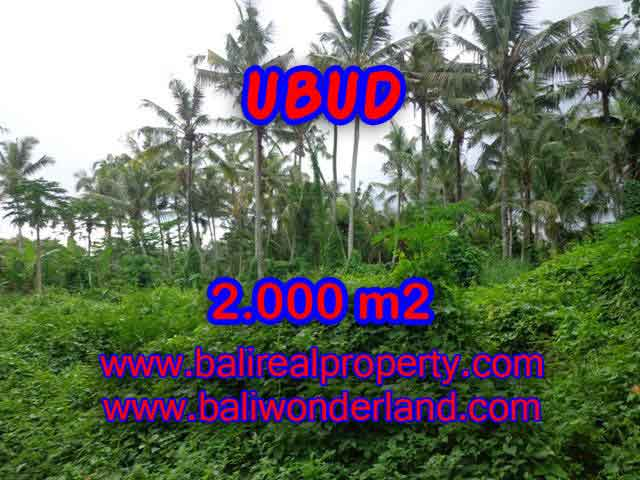 Land in Bali for sale, great view in Ubud Bali – TJUB397
