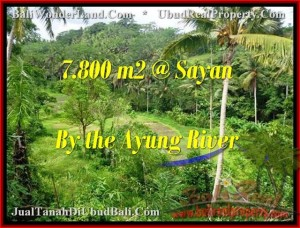 FOR SALE Exotic 7,800 m2 LAND IN UBUD TJUB472
