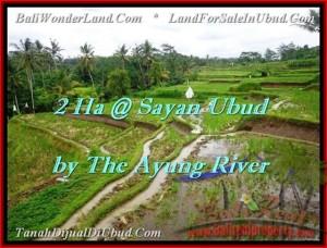Magnificent Ubud Center BALI LAND FOR SALE TJUB473