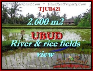 Beautiful LAND IN Ubud Tegalalang BALI FOR SALE TJUB421